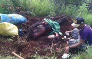 Five Lashio villagers found dead near Burma Army camp