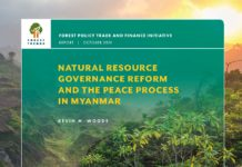 Forest Trends NRG Peace Myanmar Final Page 01