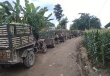 1st news about corn at sino burma boarder 3