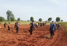 Farmers Protest Land Grabs In Siseng Township Southern Shan State 1