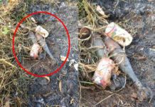 2 shrapnel shells in Pong Woe village